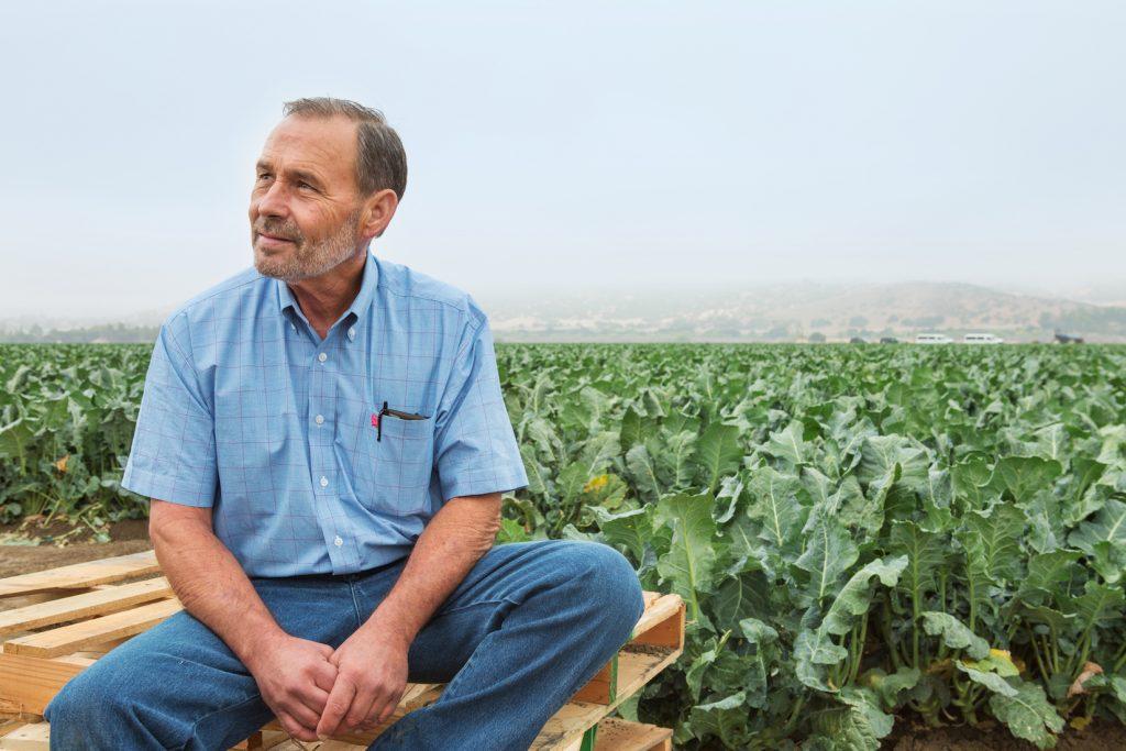 cauliflower-Growers-Express-Fresh-From-The-Source-HelloFresh
