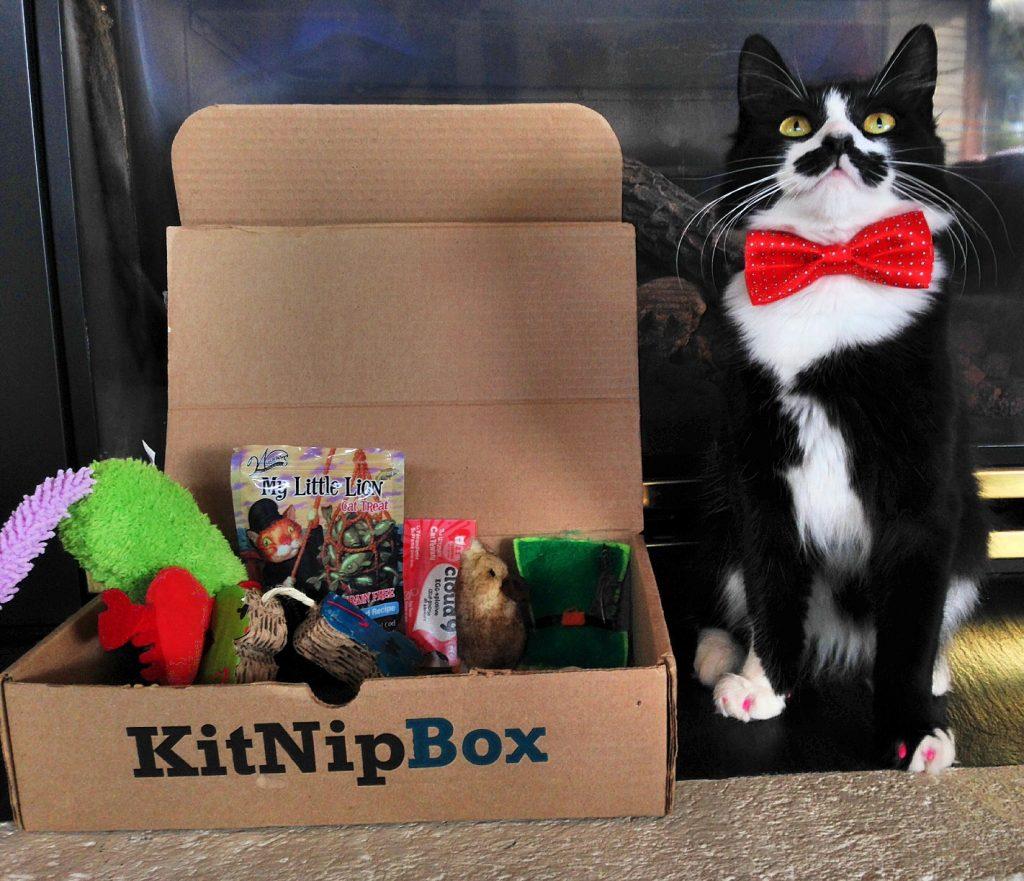 holiday gift guide-HelloFresh-kitnipbox