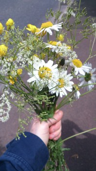 the flowers I picked for Mum. She said we used to do this all the time when small