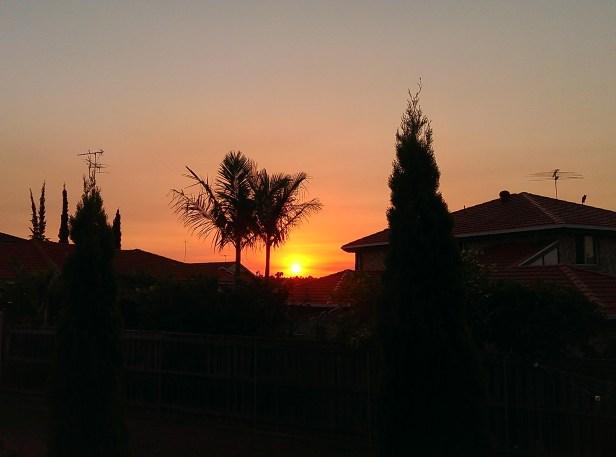 Suburban Sydney sunset