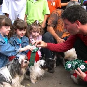 De Baeremaeker Dog contest