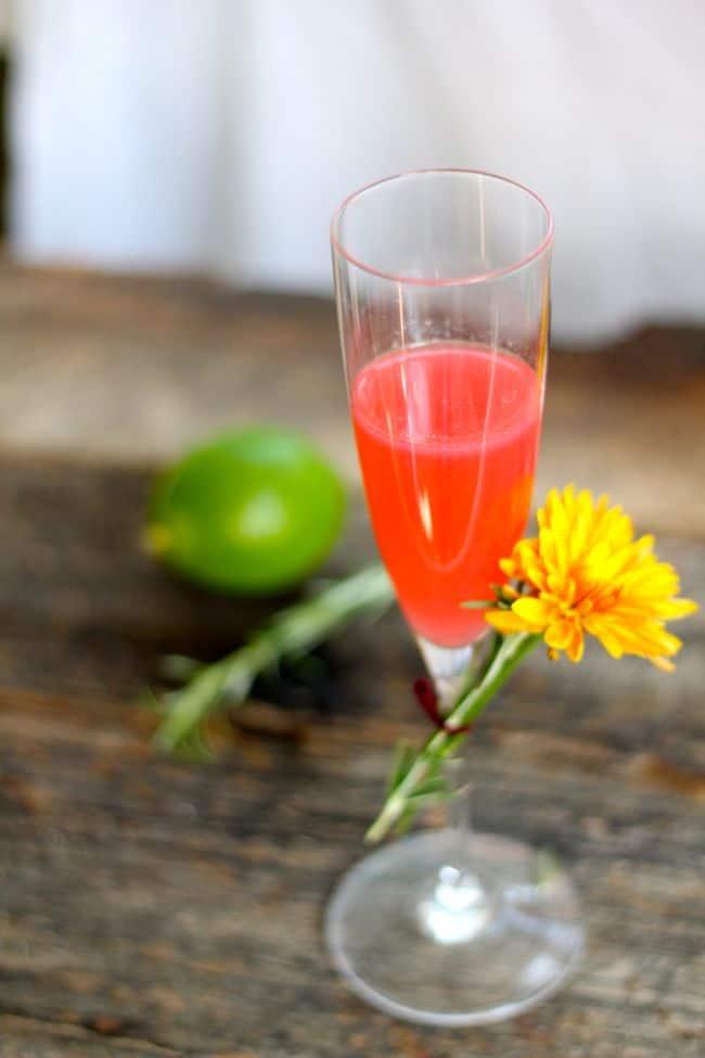 Vodka Blush Cocktail | Hello Glow