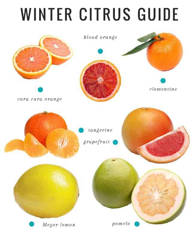 Perfect Health Diet Food List