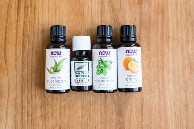 Essential Oils for Household Pests | Hello Glow