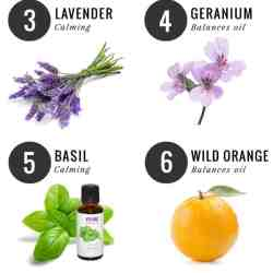 The 10 Best Essential Oils for Women's Health