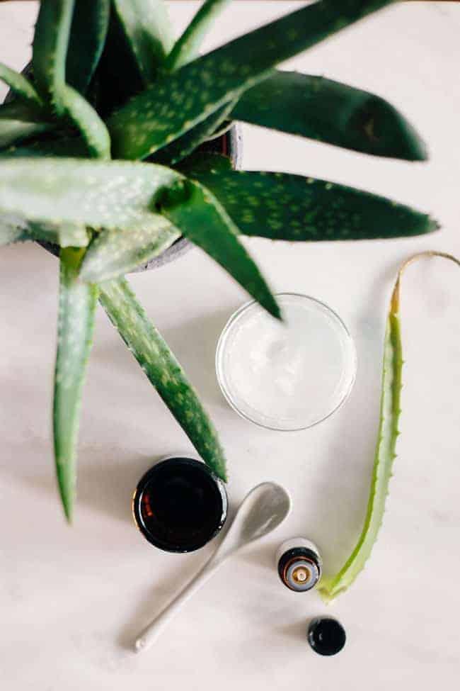 Coconut Oil Shaving Cream