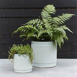 Clay Stripe Cylinder Pot