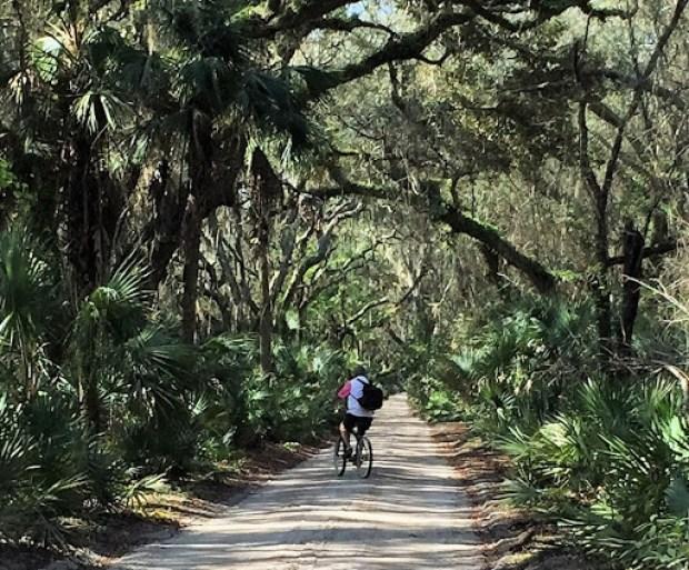 Biking on the Live Oak lined trails of Cumberland Island