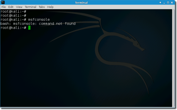 Kali Linux Terminal