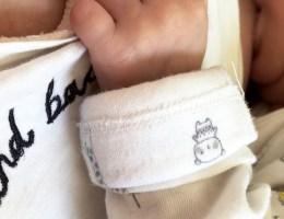 Breastfeeding Update: 12 Months