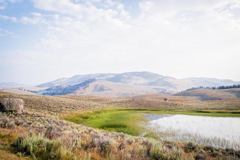 paysage dans la Lamar Valley