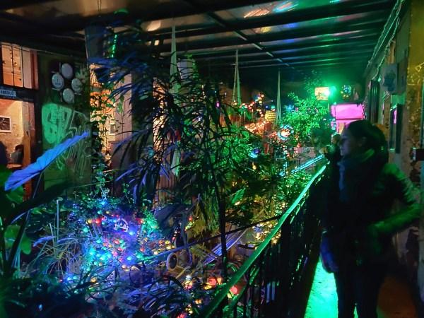intérieur néons dansle szimpla kert