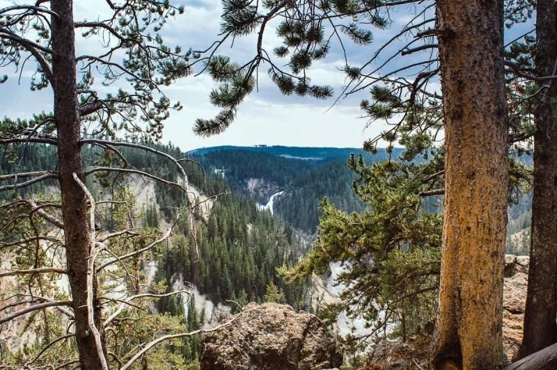 vue panoramique du canyon de yellowstone