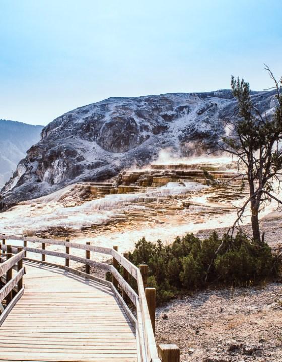 Les Mammoth Hot springs dans le parc national de Yellowstone #2