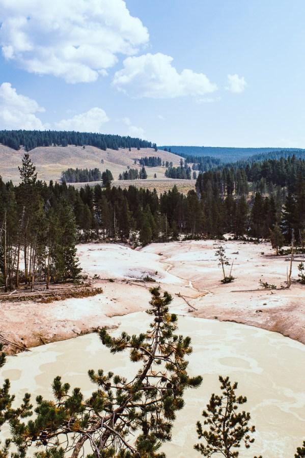 marmites de boue dans le secteur de Norris geyser basin