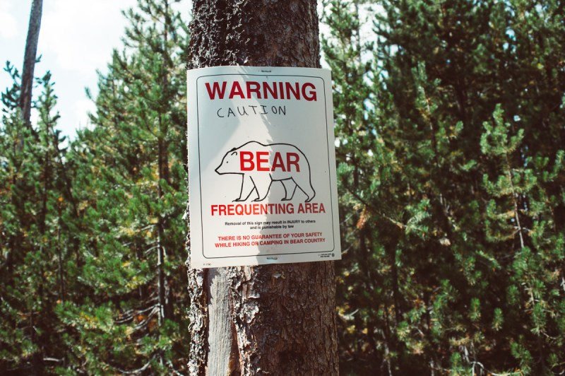 panneau attention aux ours à Yellowstone