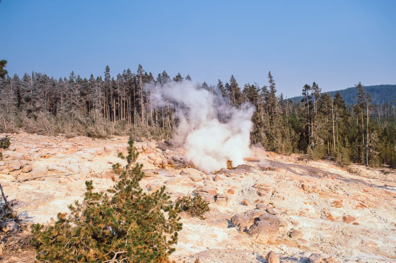geyser dans le back basin de Yellowstone