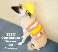 DIY Pet Costume
