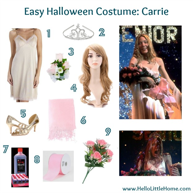 Make Home Costume Ideas Halloween