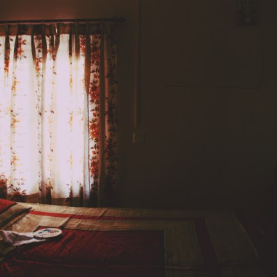 The afternoon light