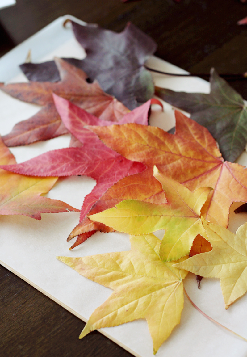 diy-autumnleafart-2