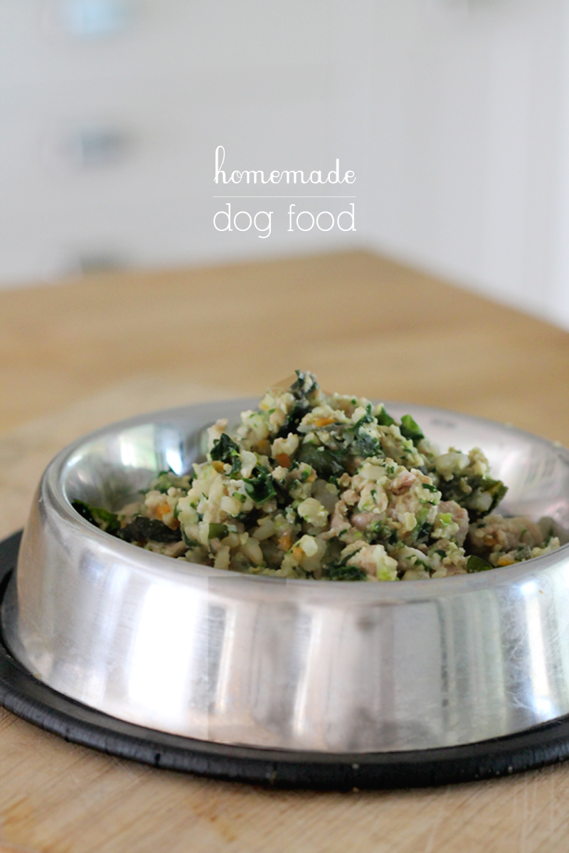 doggy-dinners