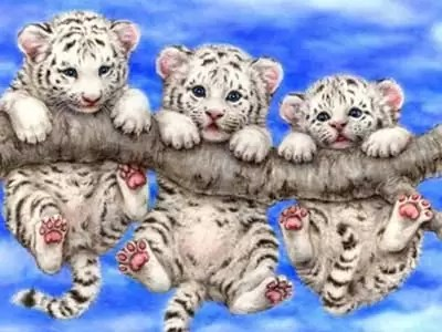 5D DIY Full Drilled Round Beads Diamond Painting Cross Stitch Diamond Embroidery Little Cute Tiger (30×30)CM