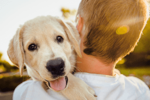 boy carrying puppy over his shoulder