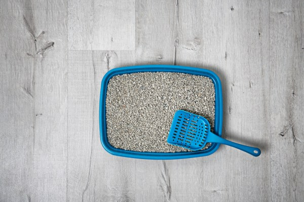 litter tray with scoop for cat top view
