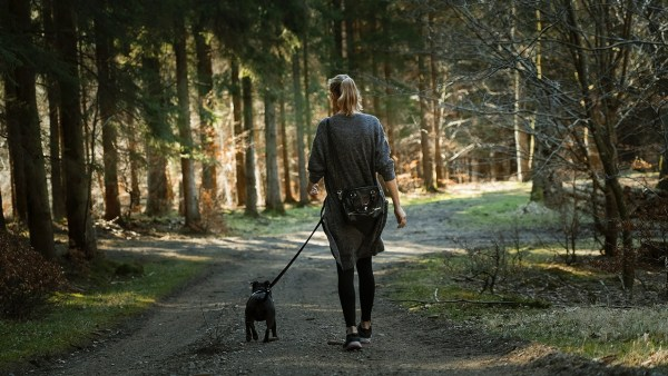 young women and his puppy leash walking on forest track