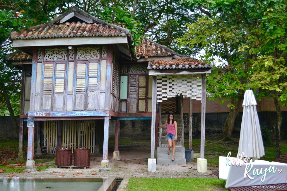 Temple Tree at Bon Ton Langkawi - Pool Area   Hello Raya Blog