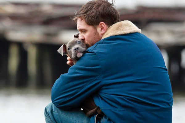 tom-hardy-with-pup-on-new-film-animal-rescue-1