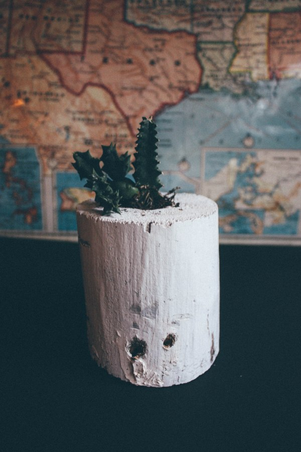 Wood Succulent Holder 4