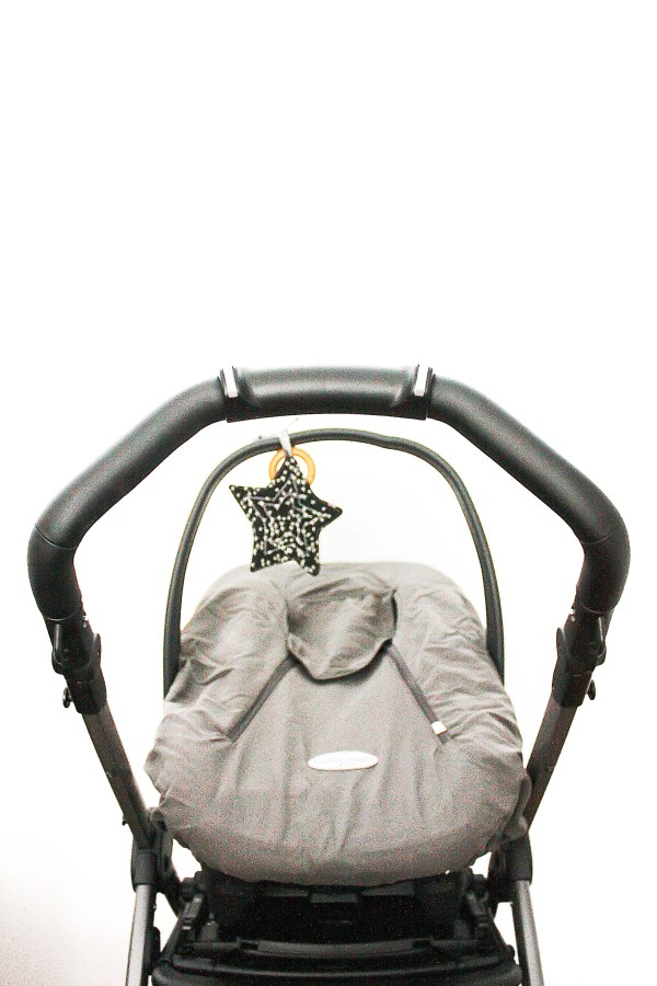 Peg Perego Car Seat and Stroller_