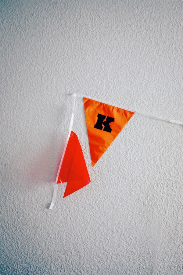 moonrise-kingdom-flag-diy-21