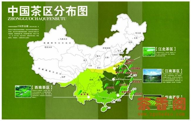 Tea Production in China: 4 Main Tea Growing Regions