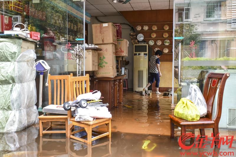 fangcun typhoon pu erh