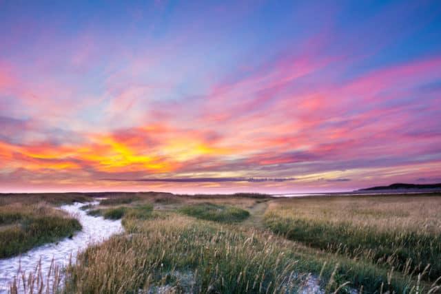 Texel duinen wandelen fietsen natuur