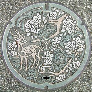 Circle manhole art