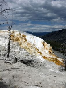 bei den Mammoth Hot Springs
