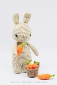 Little Bunny with Carrots