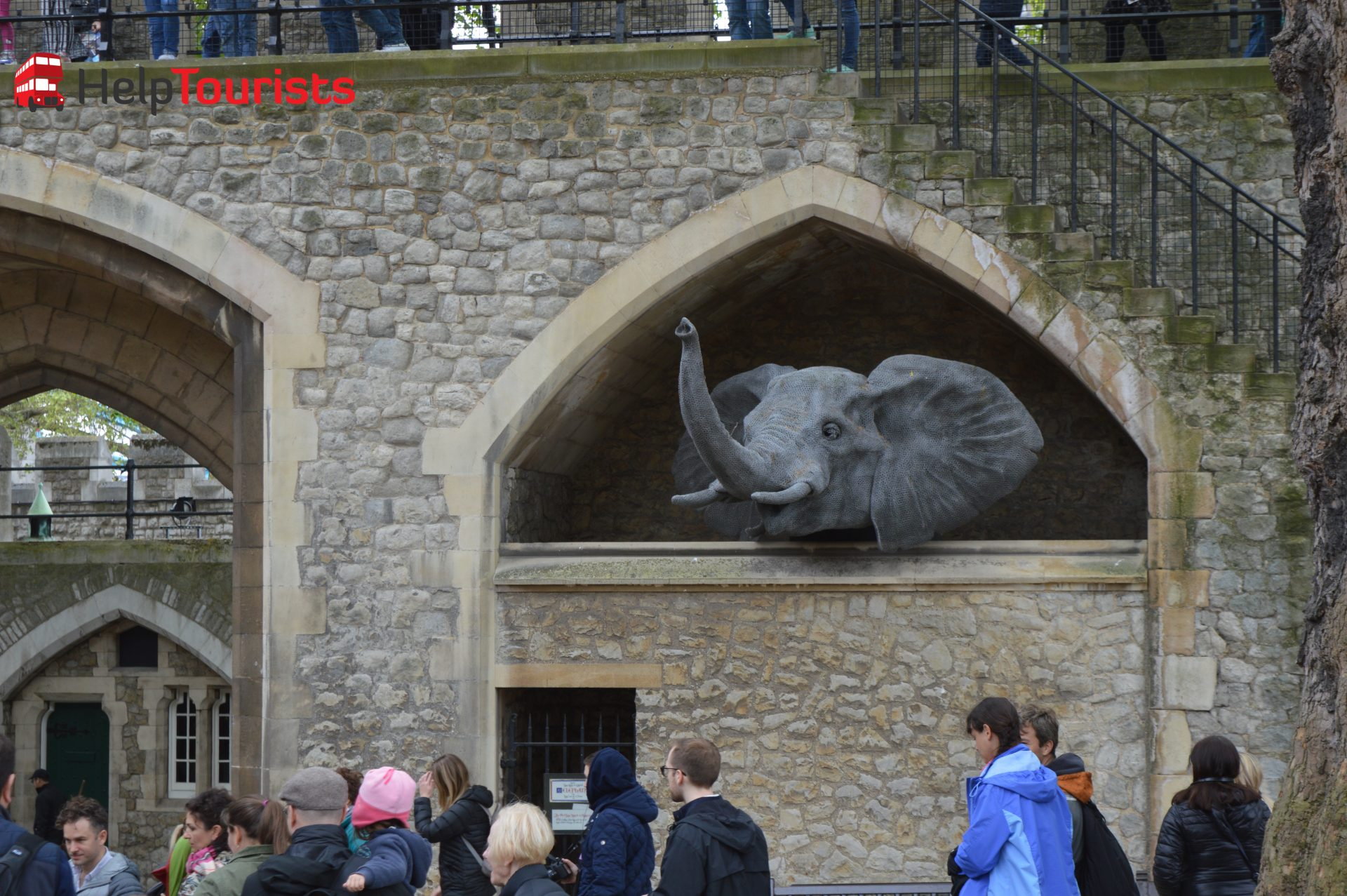Tower of London Zoo