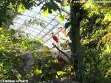 Bilder Zoo Paris