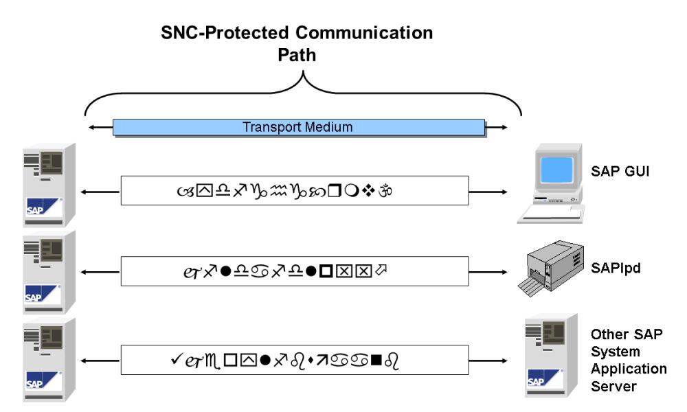 medium resolution of sap transport layer diagram