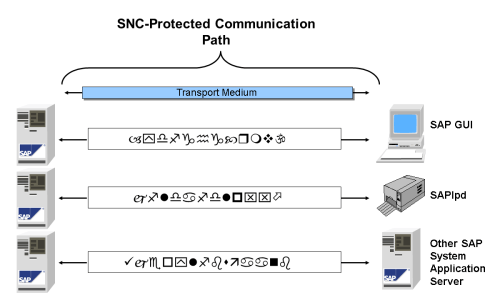small resolution of sap transport layer diagram
