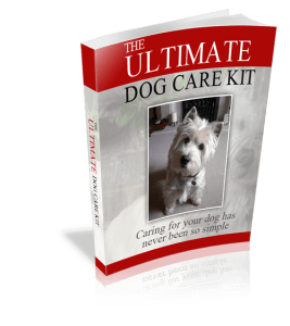 The Ultimate Dog Care Kit 500 - How To Stop Your Dog From Chewing!