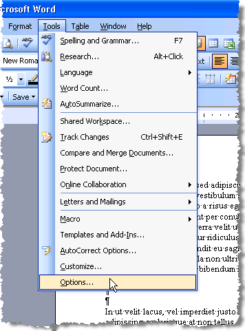 Opening Options in Word 2003