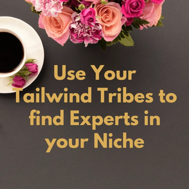 New Pinterest Trick Using Tailwind Tribe Insights