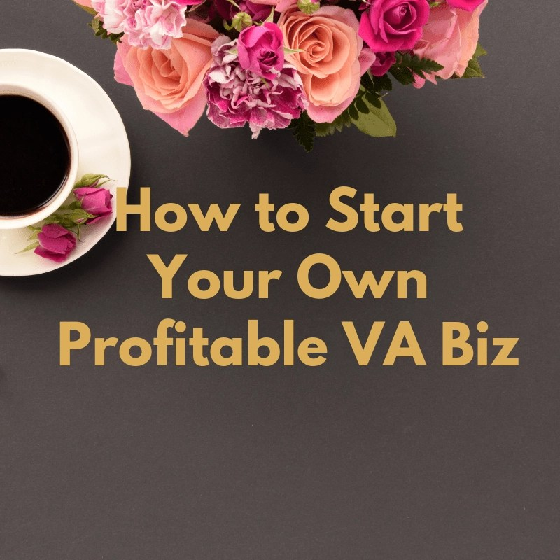 How to Start Your Own Profitable VA Business