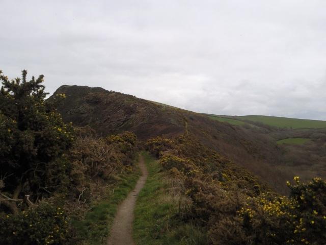 Ridge nera Pencarrow Head